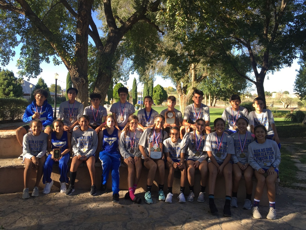 District Cross Country Results