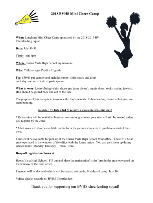 Mini Cheer Camp Info.